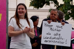 neos-besser-neue-politiker-als-alte-landschaftsverschandeler