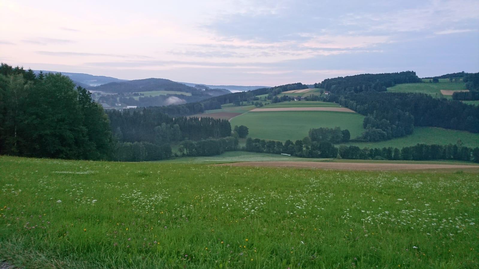 mühlviertel - landschaft - JA Erdkabel - NEIN Freileitung